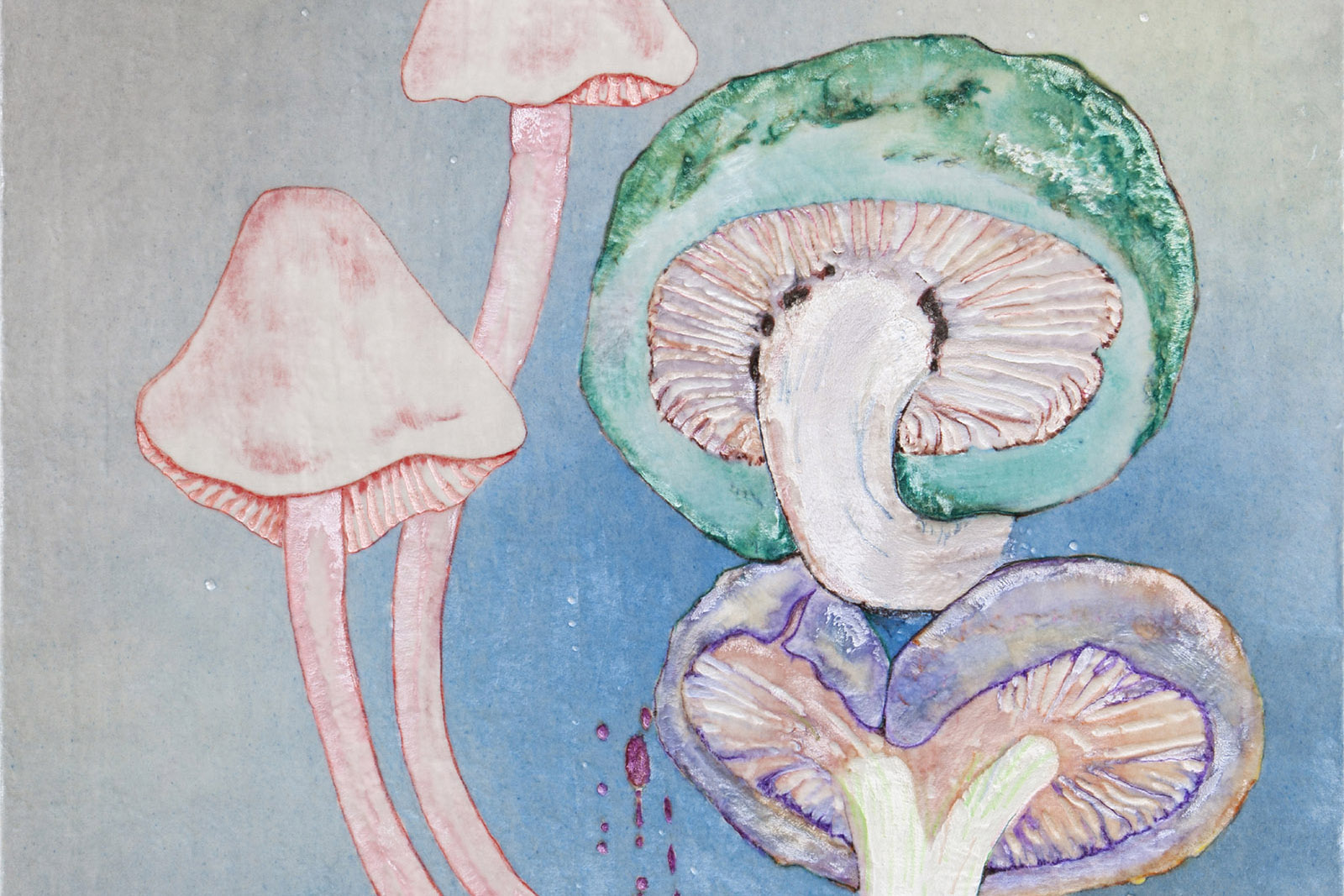 Entangled Life: How Fungi Make Our Worlds, Change Our Minds and Shape Ou
